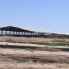 Shamrock Factory Farm Organic Dairy in the Arizona desert