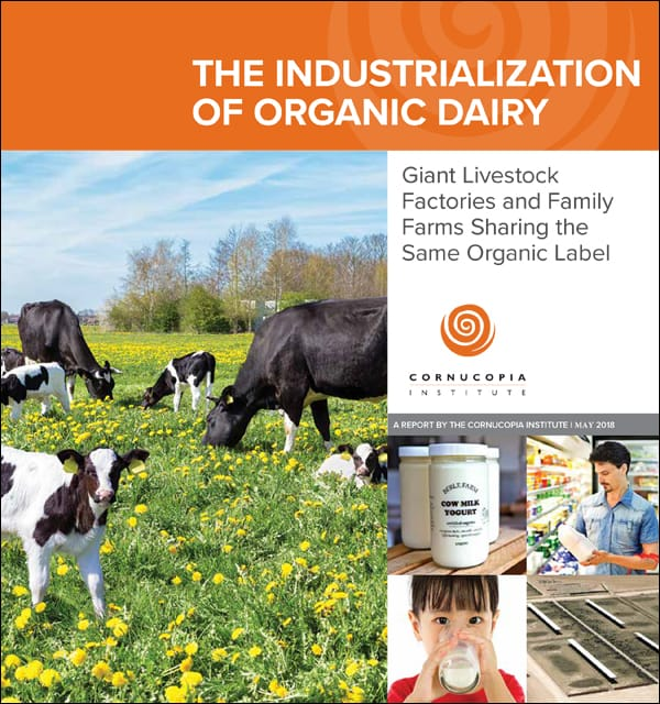 "USDA-Backed ""Factory Farm"" Takeover of Organic Milk"