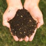 The Benefits of Alternative Farming Methods