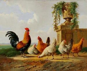 Albertus_Verhoesen_Chickens