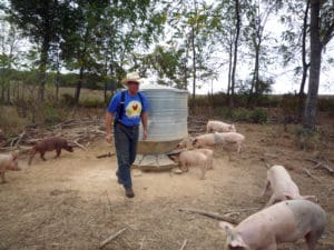 Joel_Salatin_and_pastured_pigs
