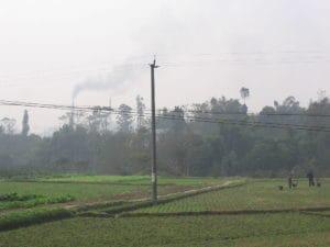 Vegetable_farming_Sichuan