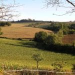 France Aims to Double Organic Farmland by 2017