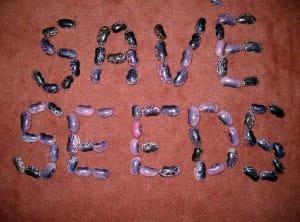 SaveSeeds