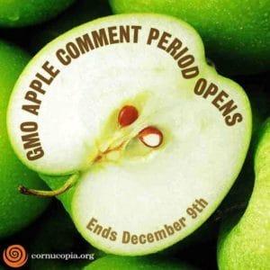 gmo.apples