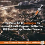 Subterfuge: FDA's Phase Out of Antibiotics for Animal Growth Purposes Ineffective — Will Disadvantage Small Farmers