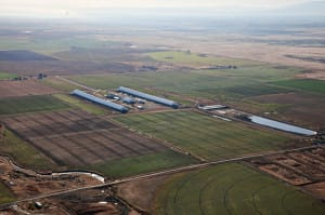overview Idaho dairy small 10_10_09 001