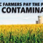 Survey Shows Organic Farmers Pay the Price for GMO Contamination