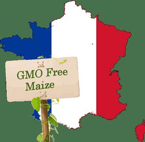 GMOFreeMaizeFrance