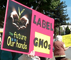 The-future-label-GMOs