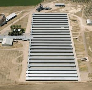 idalou all barns 04