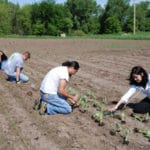 Tribally Supported Agriculture