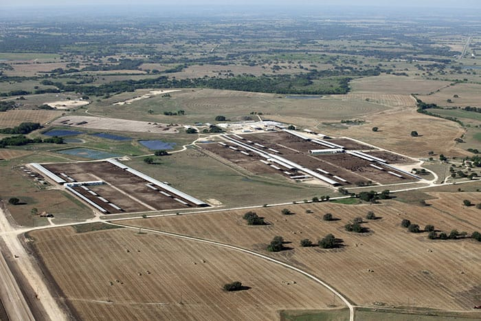 Overview of the two feedlots.  It's important to note that virtually all the surrounding fields, which could be used for pasture, have been recently cut and baled for hay.  There is effectively no pasture available to these animals.