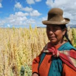 Bolivian Women Bank on Sweet Success of Quinoa Bars