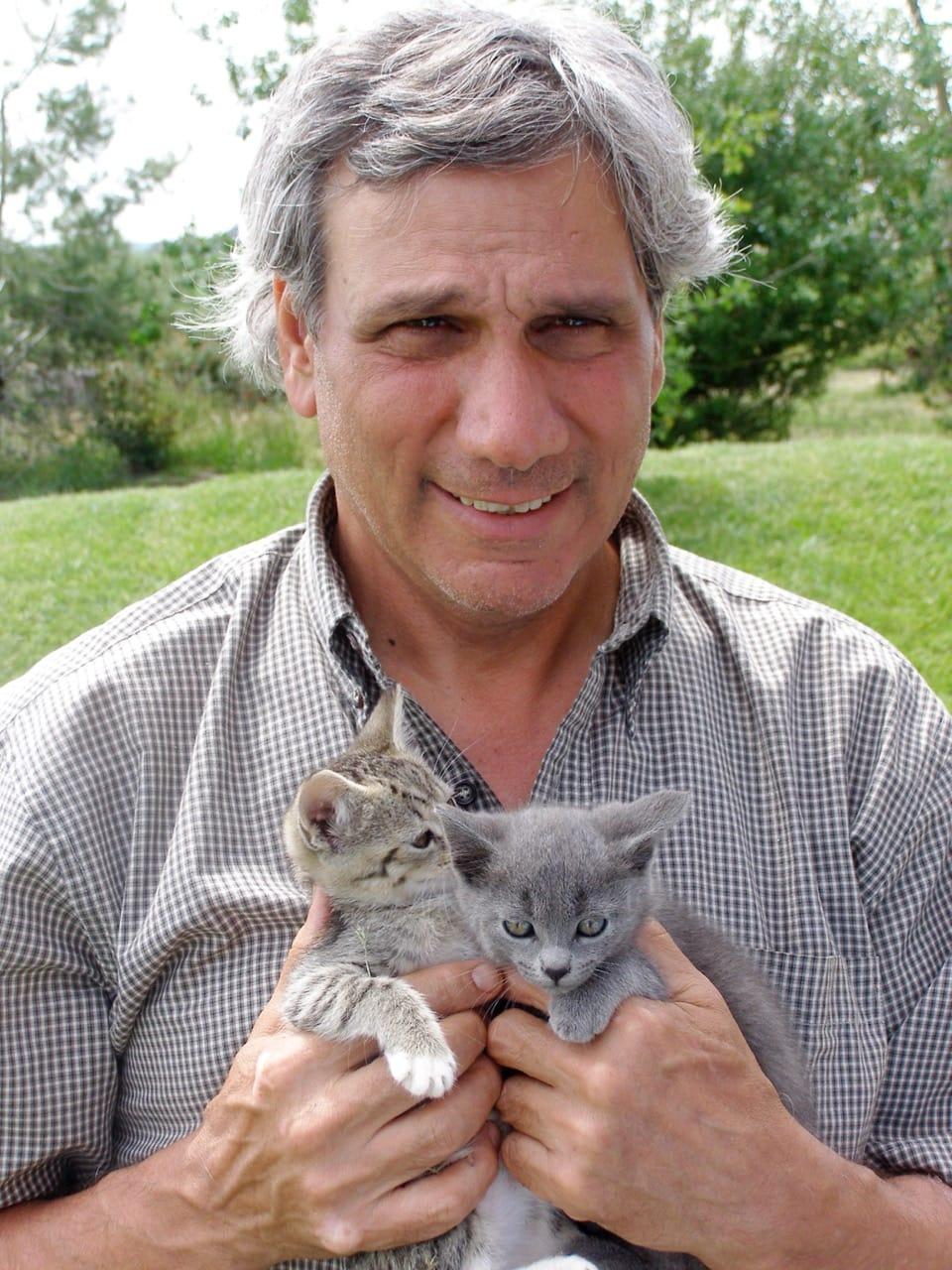 jerry-kittens
