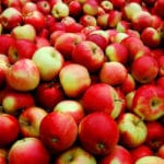 U.S. Will Start Importing Fresh Apples From China