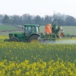 Study Finds Bug Diversity Cuts Down on Crop Pests