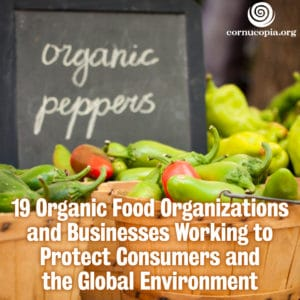 US Organic Food Market To Grow 14% From 2013