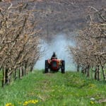 EPA Mulls Ban on Nation's Most Heavily Used Insecticide