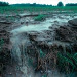 Fertilizer Applied to Fields Today Will Pollute Water for Decades