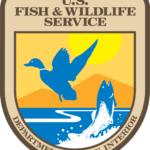 Fish and Wildlife Service to Assess Harm from Glyphosate and Atrazine on Endangered Species