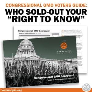 ci_voterguiderighttoknow