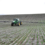 Monsanto's Glyphosate Data Released and Re-Analyzed
