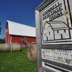 Organic Farmers Growing in Iowa