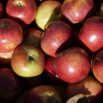 Help for Farmers with the Federal Tax Deduction for Food Donation
