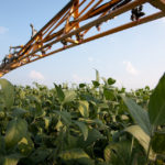 Monsanto Petitions Arkansas to Reject Dicamba Ban