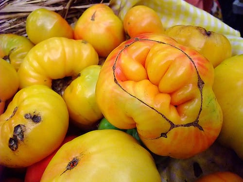 Consumers Happy to Buy Imperfect Crops