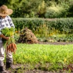 Measuring Biodiversity on Organic Farms
