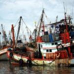 New Tool Helps Retailers Gauge Human Right Violations in Seafood