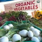 Study Deems Organic Diet Best for the Planet