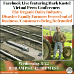 Live (virtual) Cornucopia Press Conference: The Organic Dairy Industry Disaster