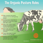 "The ""Organic Pasture Rule"": How the Law Sets Minimum Standards for Grazing"
