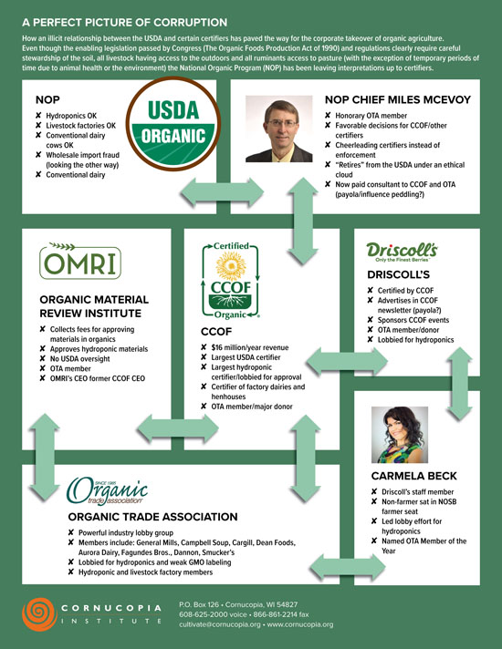 Organic Certifier Corruption