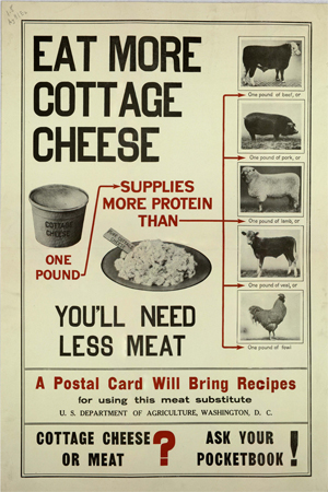 The Complete Guide To The Best Cottage Cheese Cornucopia Institute