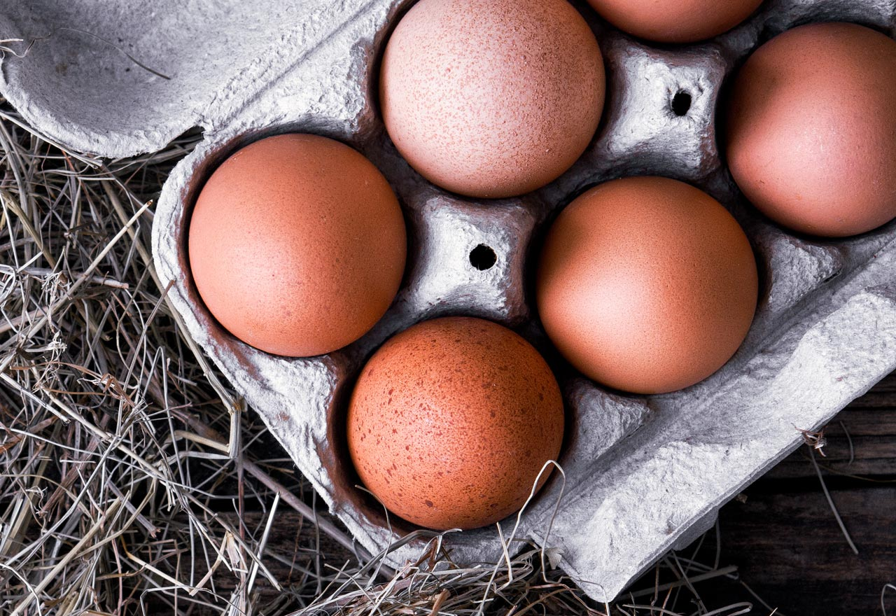 Organic Egg Scorecard - Cornucopia Institute