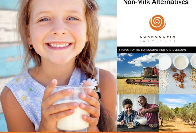 Plant-Based Beverage Report