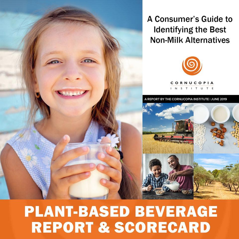 Plant-Based Beverage Report