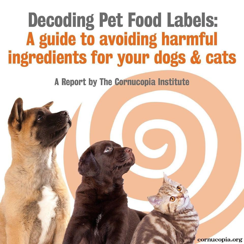 Pet Food Report