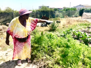 Khayelitsha Farmer