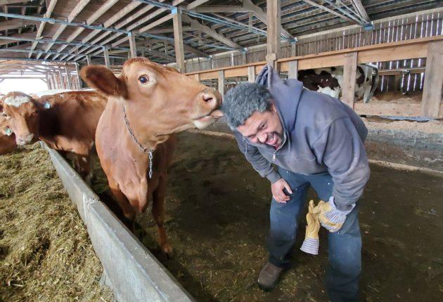 Earl Ransom, Strafford Organic Dairy