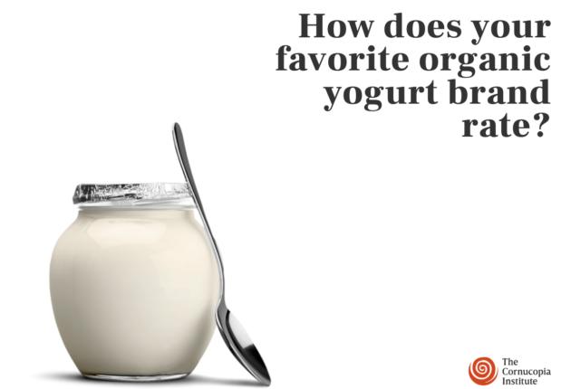New_yogurt