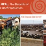 Organic Beef Report Cover